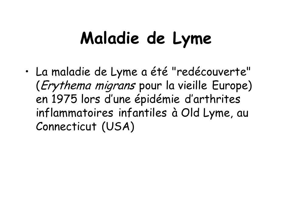 Maladie de Lyme La maladie de Lyme a été