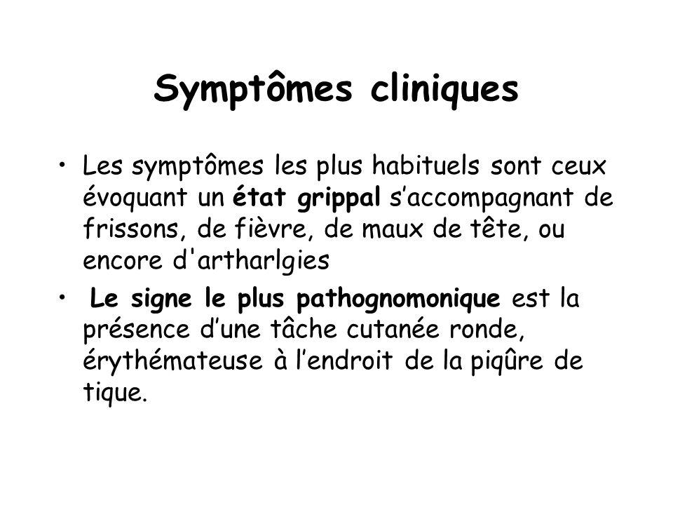 Symptômes cliniques Les symptômes les plus habituels sont ceux évoquant un état grippal s'accompagnant de frissons, de fièvre, de maux de tête, ou enc