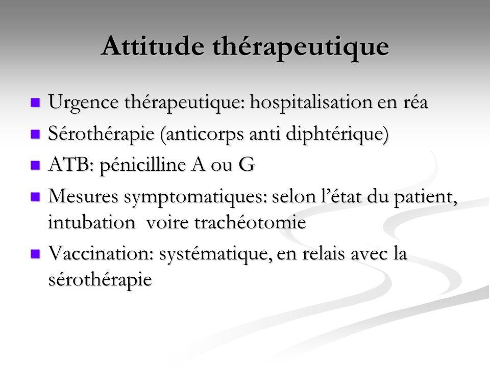 Attitude thérapeutique Urgence thérapeutique: hospitalisation en réa Urgence thérapeutique: hospitalisation en réa Sérothérapie (anticorps anti diphté