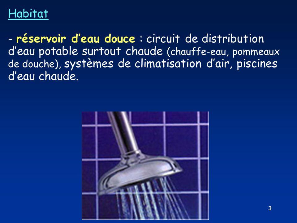 3 Habitat - réservoir d'eau douce : circuit de distribution d'eau potable surtout chaude (chauffe-eau, pommeaux de douche), systèmes de climatisation