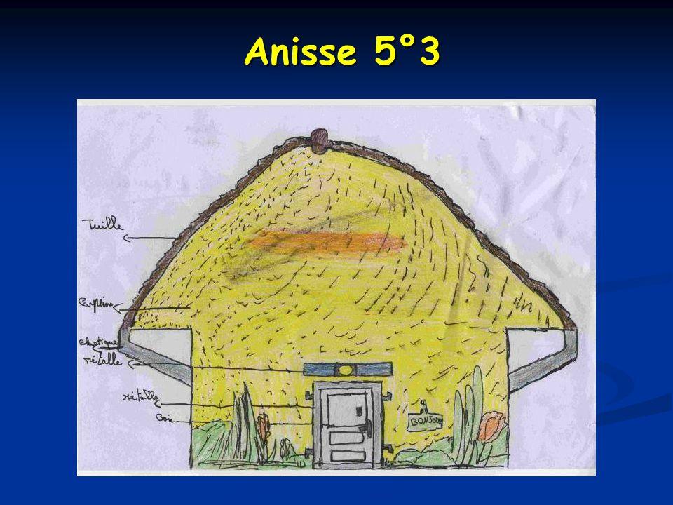 Anisse 5°3