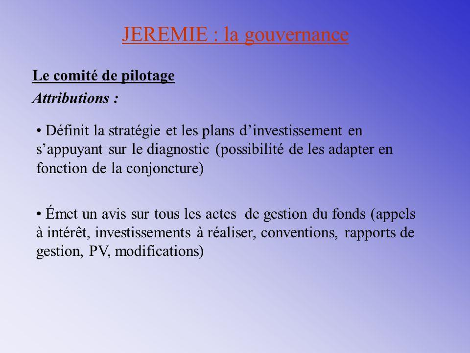 Définit la stratégie et les plans d'investissement en s'appuyant sur le diagnostic (possibilité de les adapter en fonction de la conjoncture) Émet un