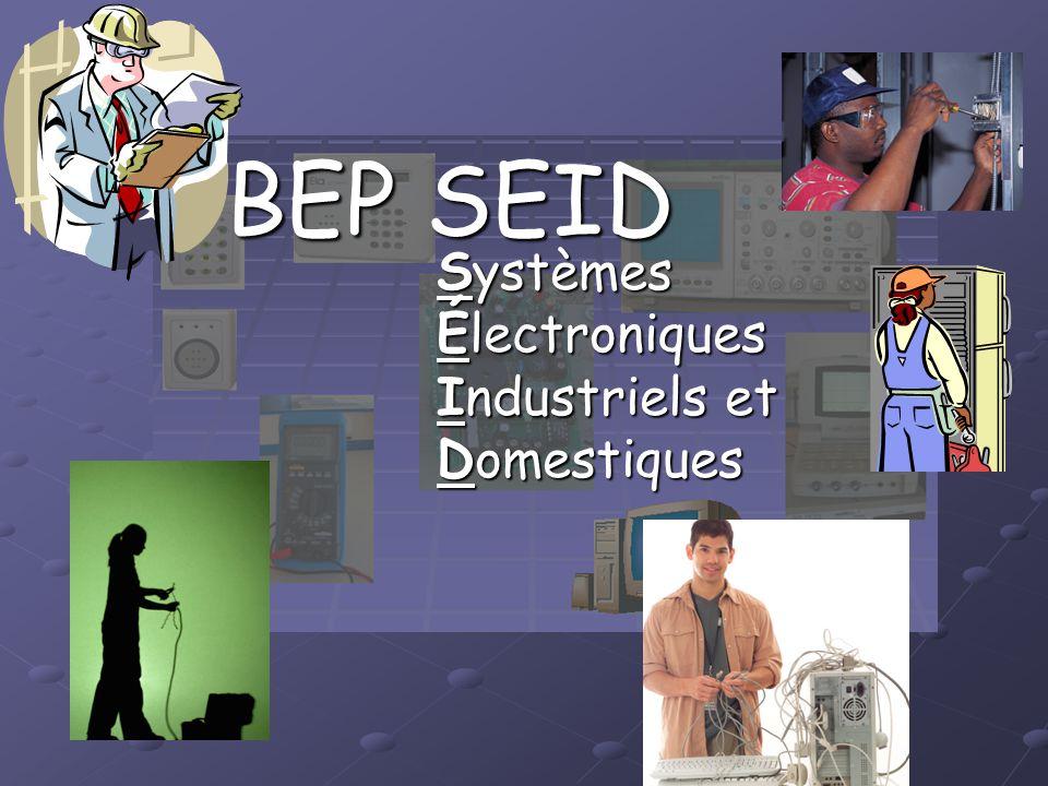 Systèmes Électroniques Industriels et Domestiques BEP SEID