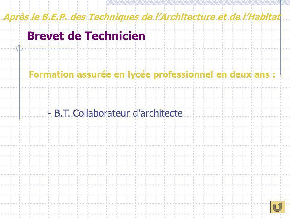 Brevet de Technicien Formation assurée en lycée professionnel en deux ans : Après le B.E.P. des Techniques de l'Architecture et de l'Habitat - B.T. Co