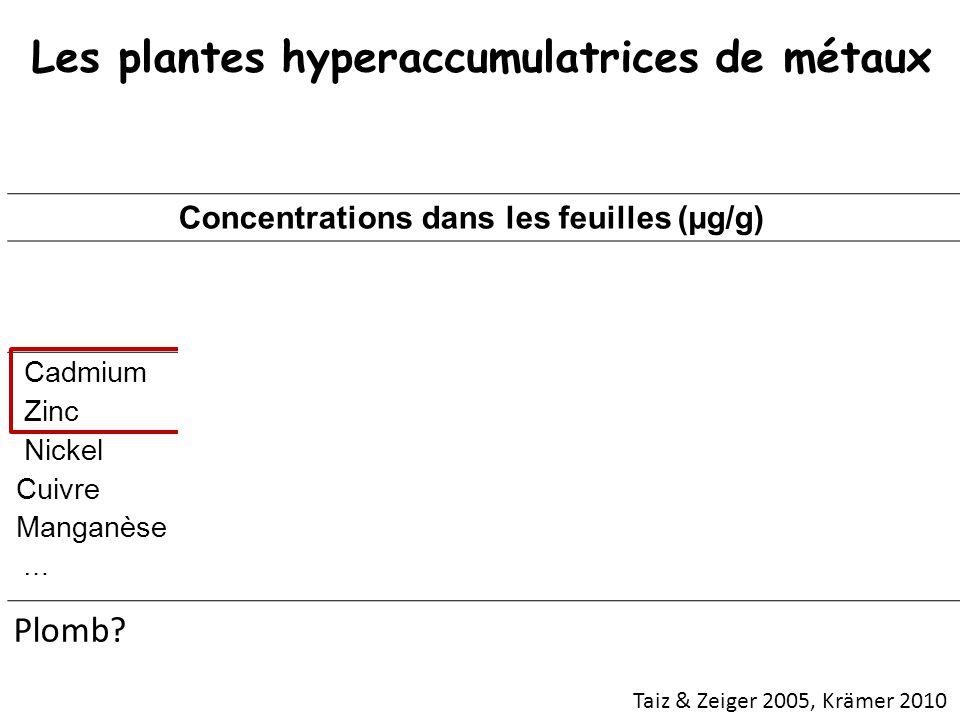 Concentrations dans les feuilles (µg/g) PLANTES