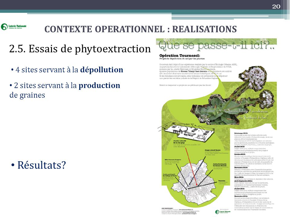 CONTEXTE OPERATIONNEL : REALISATIONS 2.5. Essais de phytoextraction 4 sites servant à la dépollution 2 sites servant à la production de graines 20 Rés