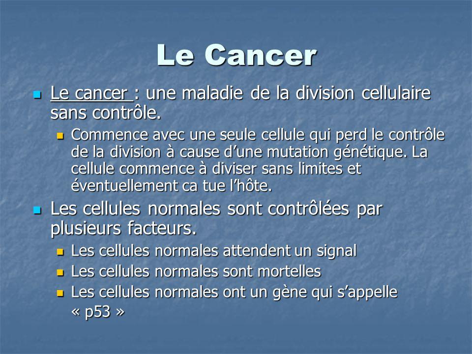 Le Cancer Le cancer : une maladie de la division cellulaire sans contrôle. Le cancer : une maladie de la division cellulaire sans contrôle. Commence a