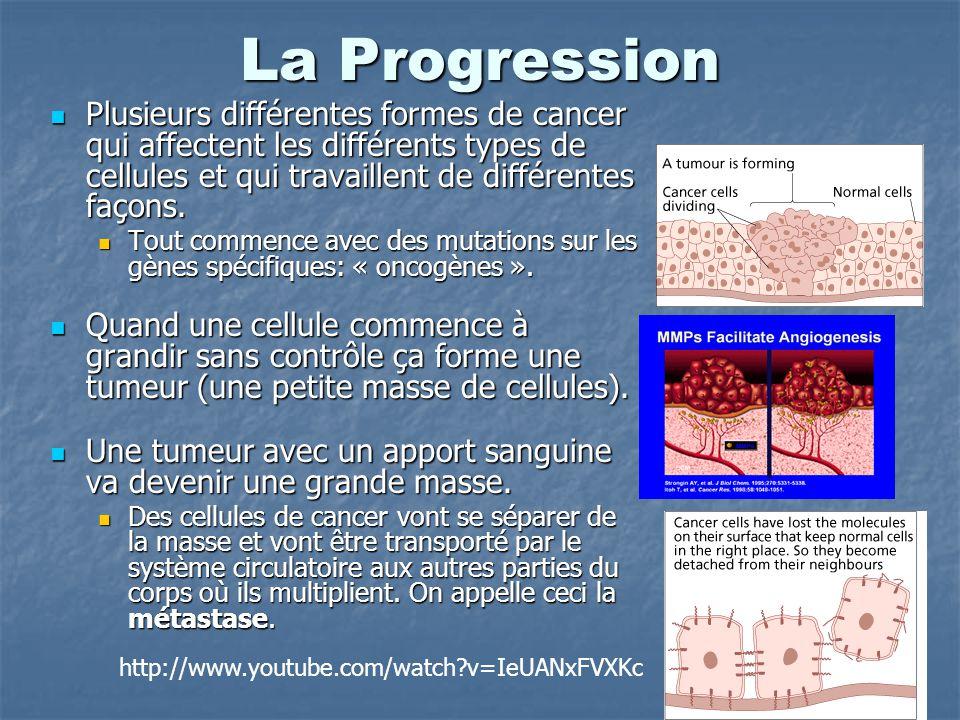 La Progression Plusieurs différentes formes de cancer qui affectent les différents types de cellules et qui travaillent de différentes façons. Plusieu