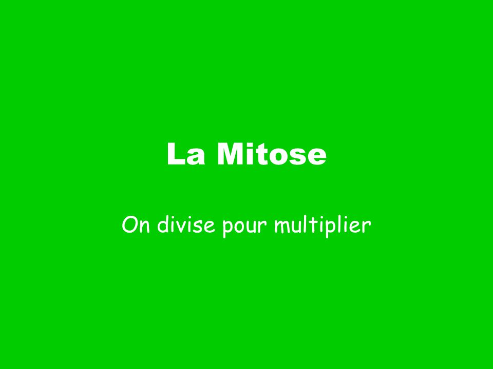 La Mitose On divise pour multiplier
