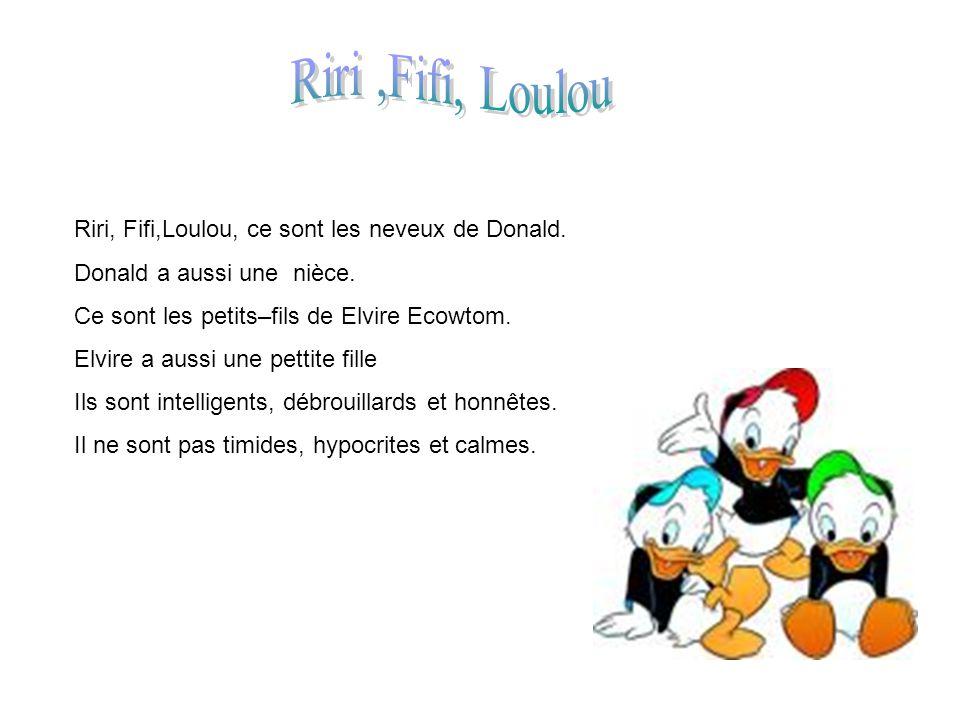 Riri, Fifi,Loulou, ce sont les neveux de Donald. Donald a aussi une nièce. Ce sont les petits–fils de Elvire Ecowtom. Elvire a aussi une pettite fille