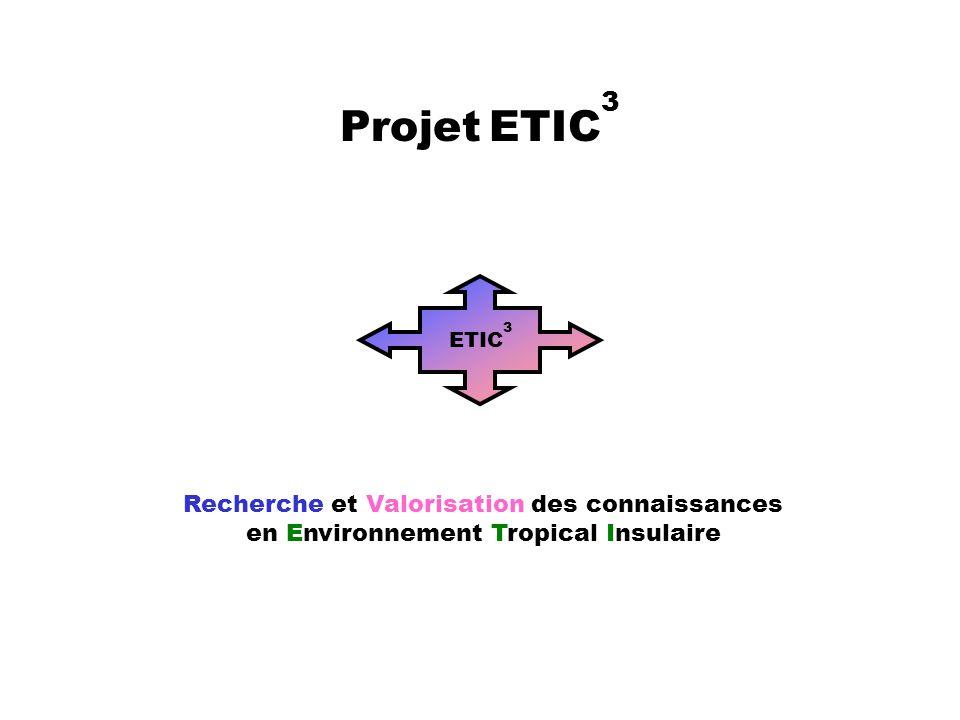 Recherche et Valorisation des connaissances en Environnement Tropical Insulaire ETIC 3 Projet ETIC 3