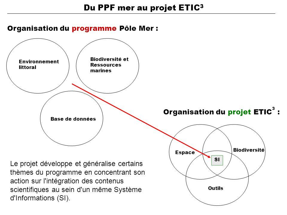 Organisation du programme Pôle Mer : Organisation du projet ETIC 3 : Biodiversité Espace Outils Base de données Biodiversité et Ressources marines Environnement littoral SI Le projet développe et généralise certains thèmes du programme en concentrant son action sur l intégration des contenus scientifiques au sein d un même Système d Informations (SI).