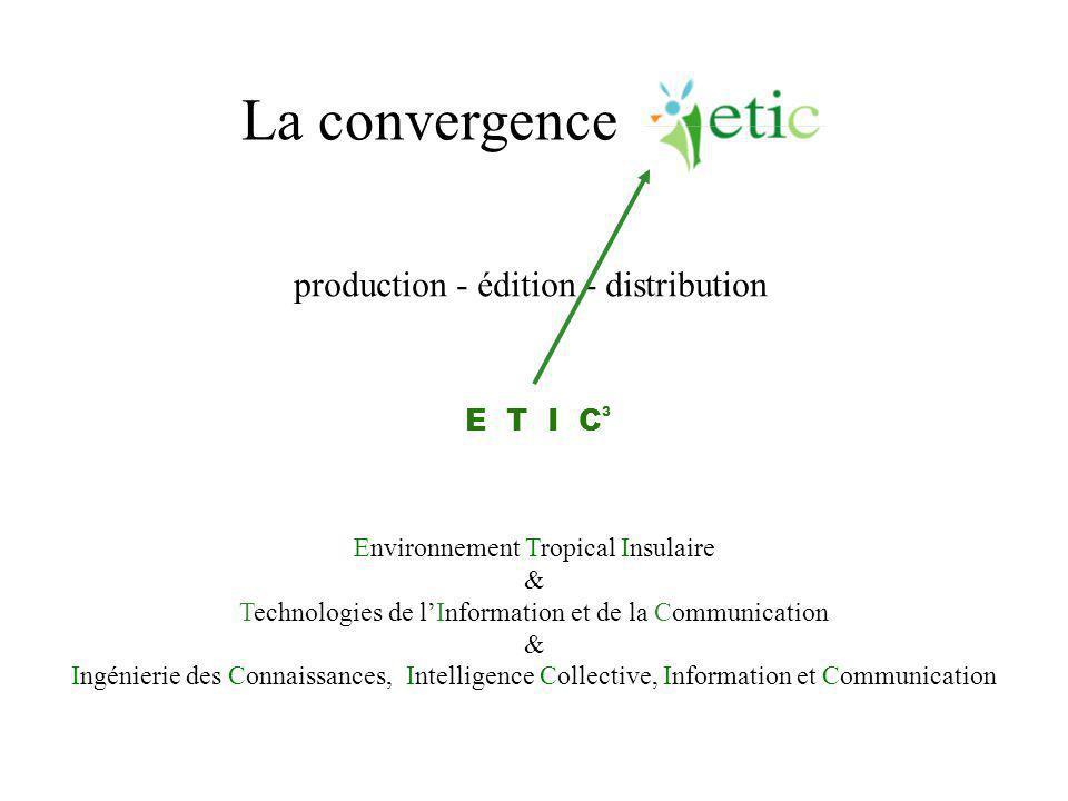 La convergence Environnement Tropical Insulaire & Technologies de l'Information et de la Communication & Ingénierie des Connaissances, Intelligence Co