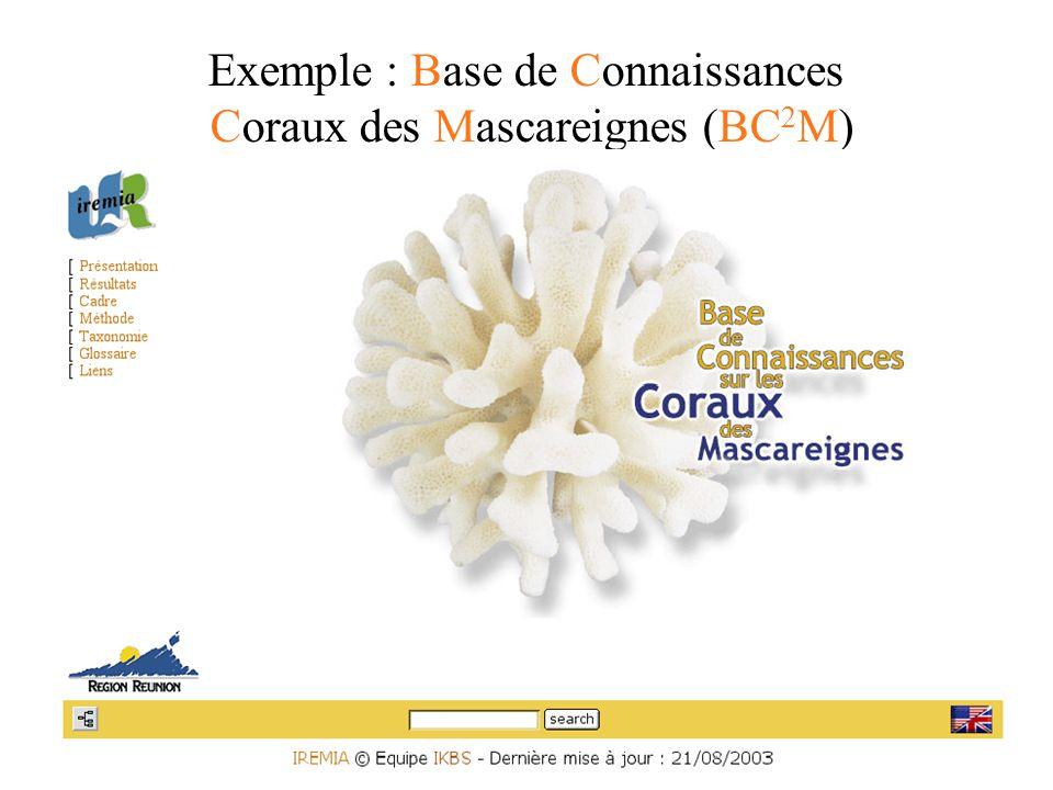 Exemple : Base de Connaissances Coraux des Mascareignes (BC 2 M)