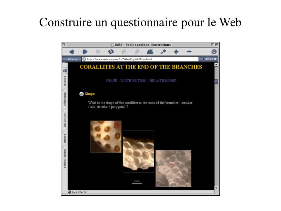 Construire un questionnaire pour le Web