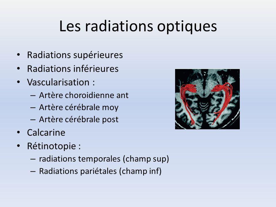 Les radiations optiques Radiations supérieures Radiations inférieures Vascularisation : – Artère choroidienne ant – Artère cérébrale moy – Artère céré