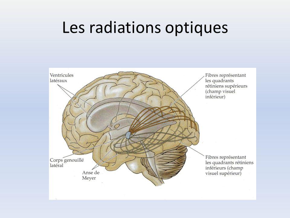 Les radiations optiques