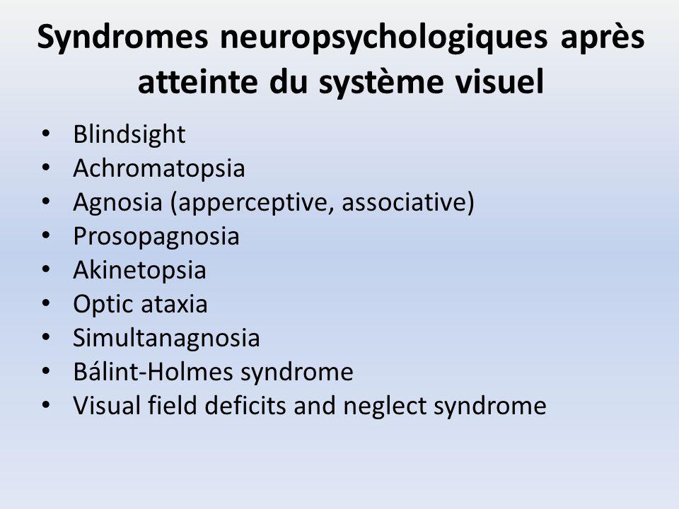 Syndromes neuropsychologiques après atteinte du système visuel Blindsight Achromatopsia Agnosia (apperceptive, associative) Prosopagnosia Akinetopsia