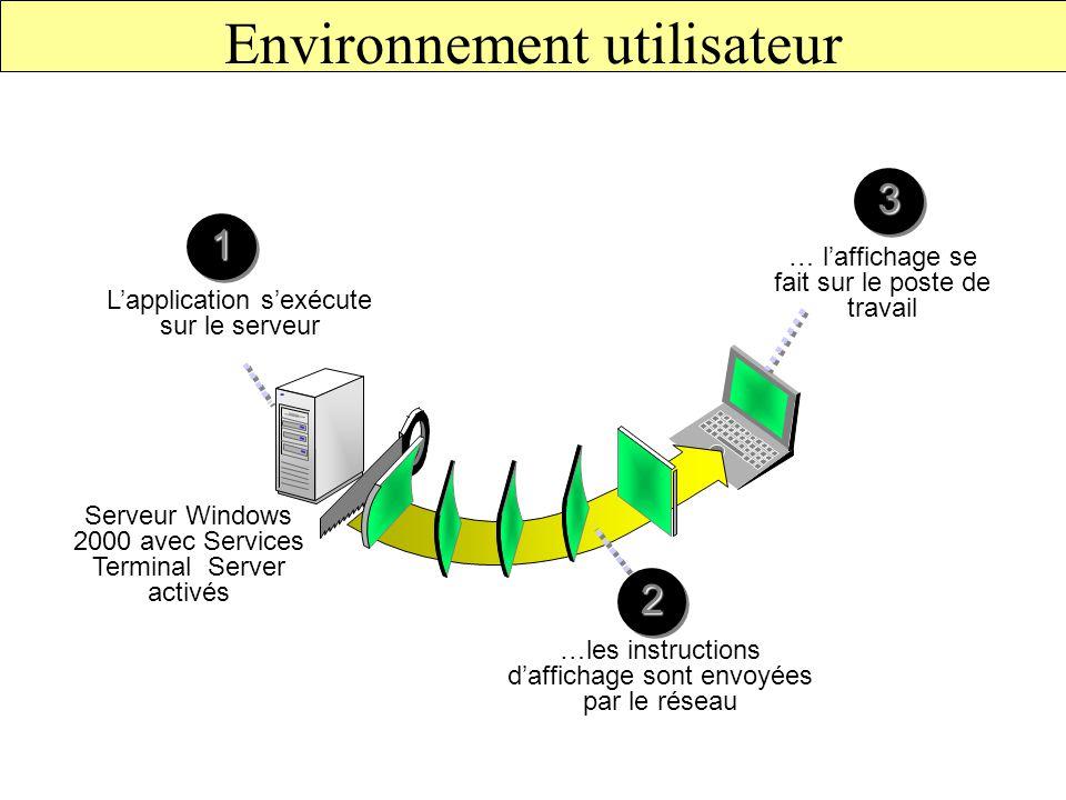 Environnement utilisateur Serveur Windows 2000 avec Services Terminal Server activés … l'affichage se fait sur le poste de travail L'application s'exécute sur le serveur 11 …les instructions d'affichage sont envoyées par le réseau 22 33