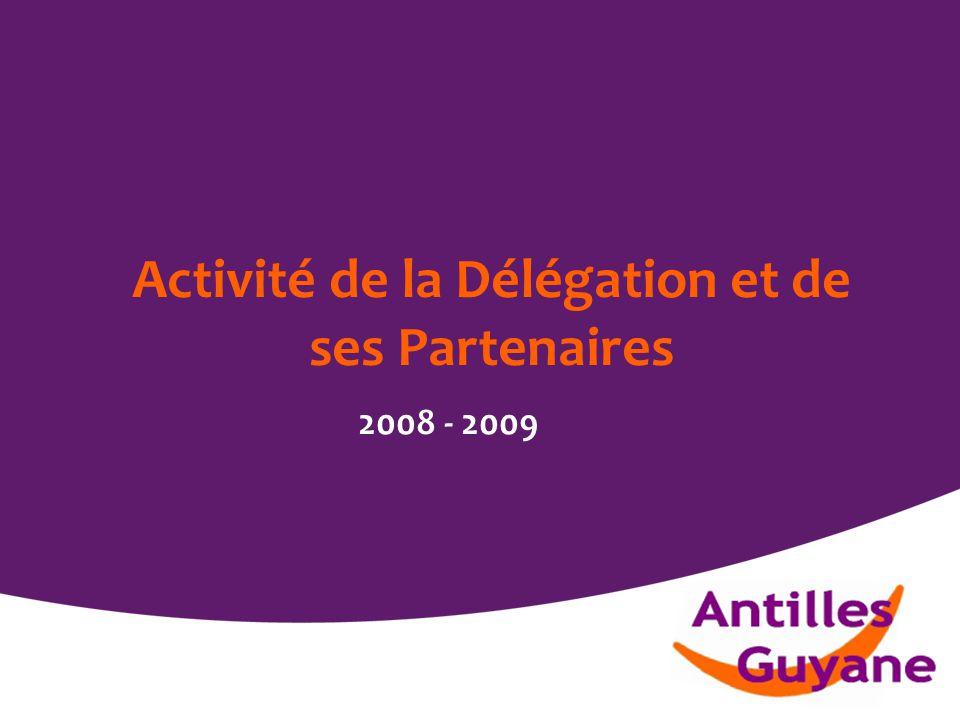 Activité de la Délégation et de ses Partenaires 2008 - 2009