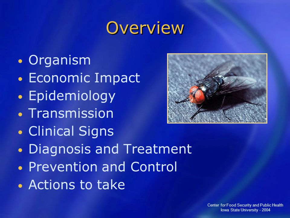 Center for Food Security and Public Health Iowa State University - 2004 Overview Organism Economic Impact Epidemiology Transmission Clinical Signs Diagnosis and Treatment Prevention and Control Actions to take