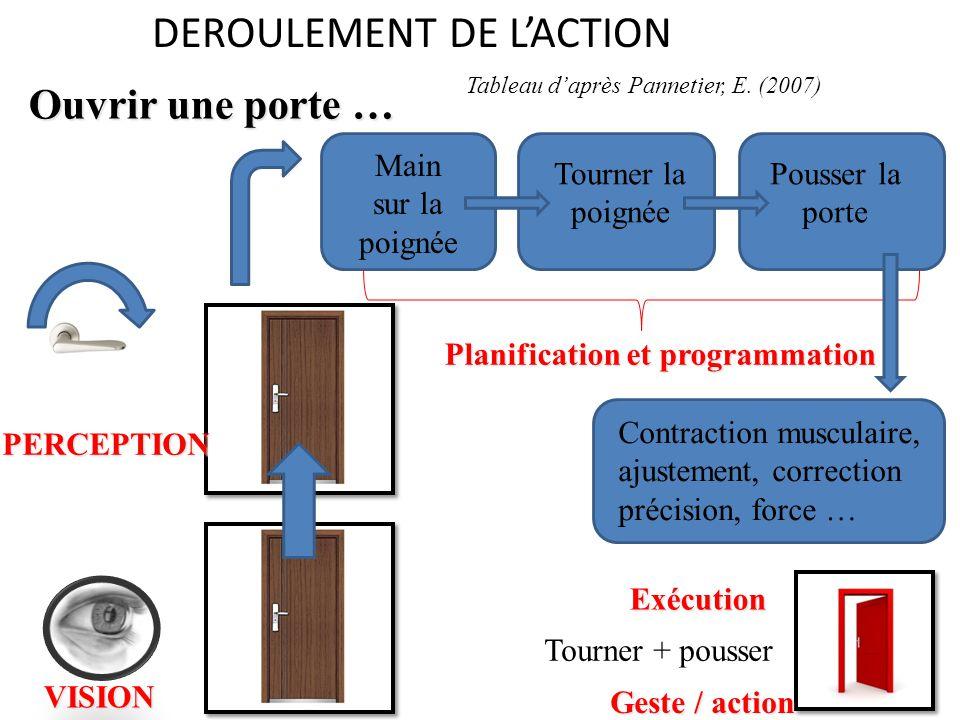 DEROULEMENT DE L'ACTIONVISION PERCEPTION Main sur la poignée Tourner la poignée Pousser la porte Planification et programmation Contraction musculaire