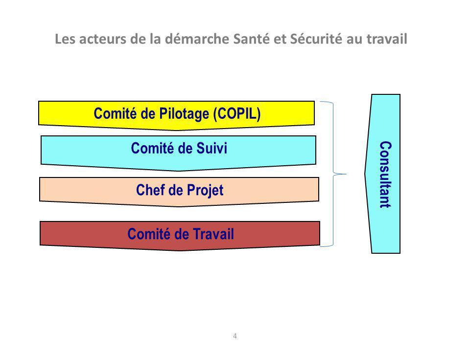 4 Les acteurs de la démarche Santé et Sécurité au travail Comité de Pilotage (COPIL) Chef de Projet Comité de Suivi Comité de Travail Co nsultan t