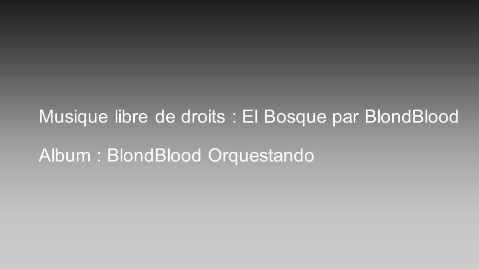 Musique libre de droits : El Bosque par BlondBlood Album : BlondBlood Orquestando