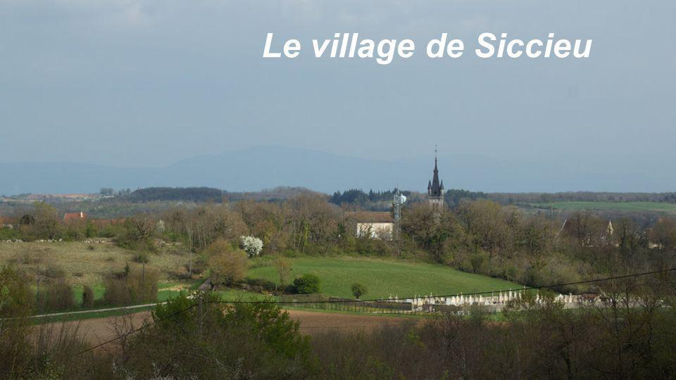 Le village de Siccieu