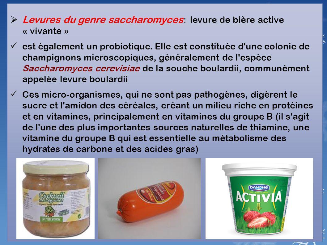  Levures du genre saccharomyces : levure de bière active « vivante » est également un probiotique. Elle est constituée d'une colonie de champignons m