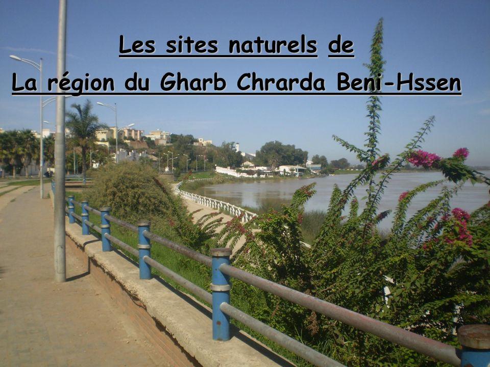 Les sites naturels : La région du Gharb Chrarda Beni-Hssen possède tous les atouts pour devenir une destination privilégiée pour les amateurs du tourisme écologique.