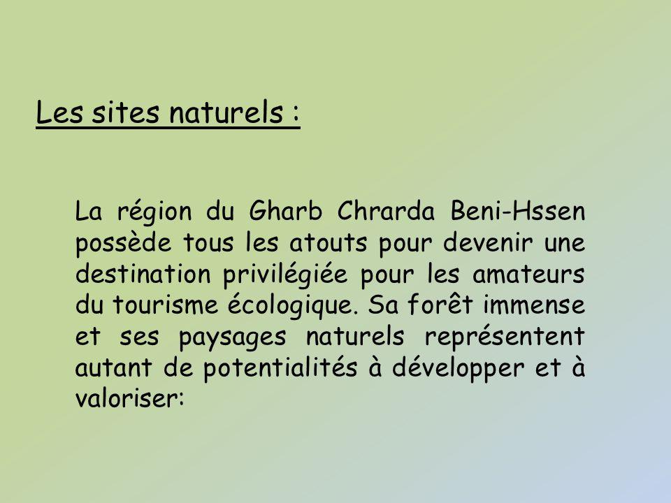 La forêt de Maâmora La forêt Maâmora, la plus importante au niveau national, est considérée à juste titre comme les poumons de l agglomération urbaine qui s étend de Kénitra jusqu à Rabat.