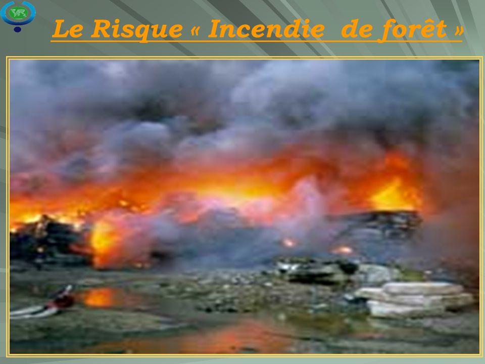 18 Le Risque « Incendie de forêt »