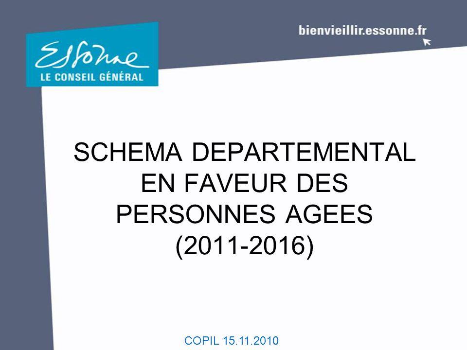 COPIL 15.11.2010 SCHEMA DEPARTEMENTAL EN FAVEUR DES PERSONNES AGEES (2011-2016)