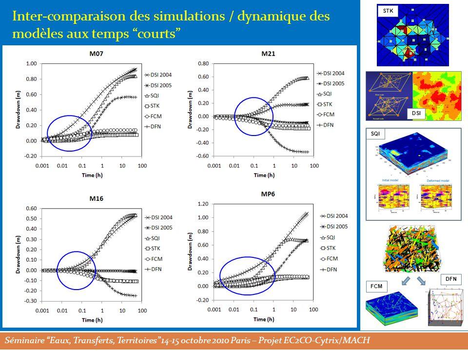 Séminaire Eaux, Transferts, Territoires 14-15 octobre 2010 Paris – Projet EC2CO-Cytrix/MACH STK DSI SQI FCM DFN Inter-comparaison des simulations / dynamique des modèles aux temps courts