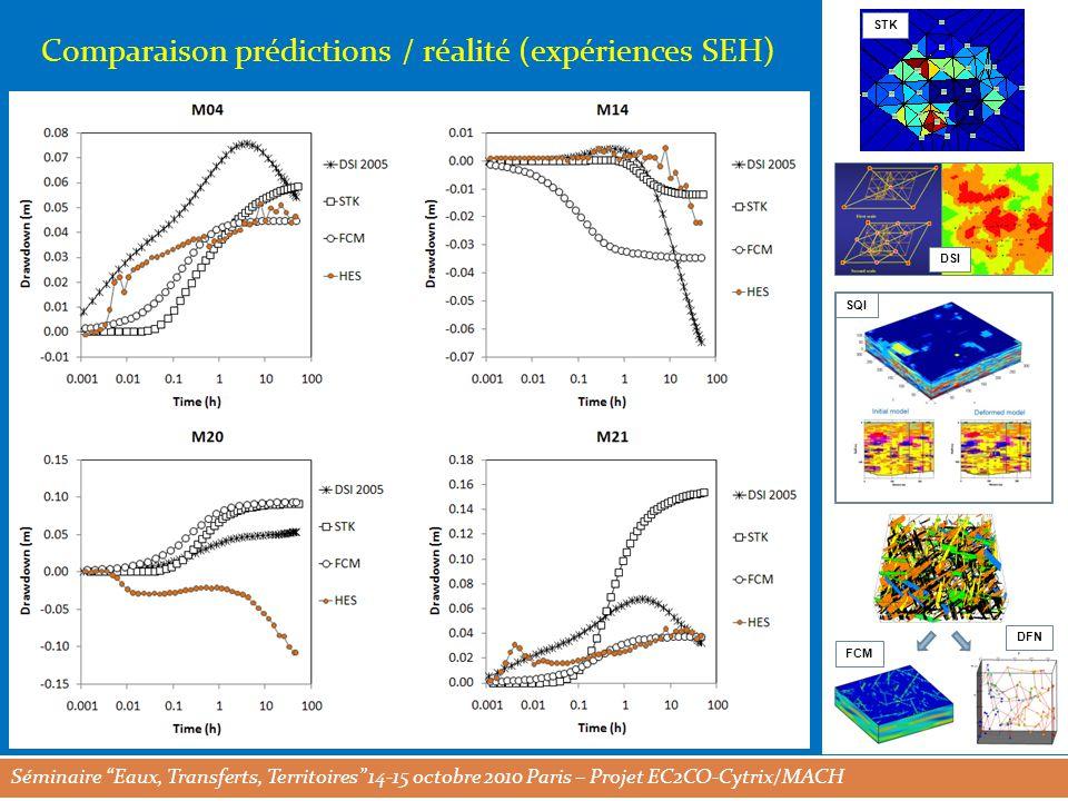 Séminaire Eaux, Transferts, Territoires 14-15 octobre 2010 Paris – Projet EC2CO-Cytrix/MACH STK DSI SQI FCM DFN Comparaison prédictions / réalité (expériences SEH)