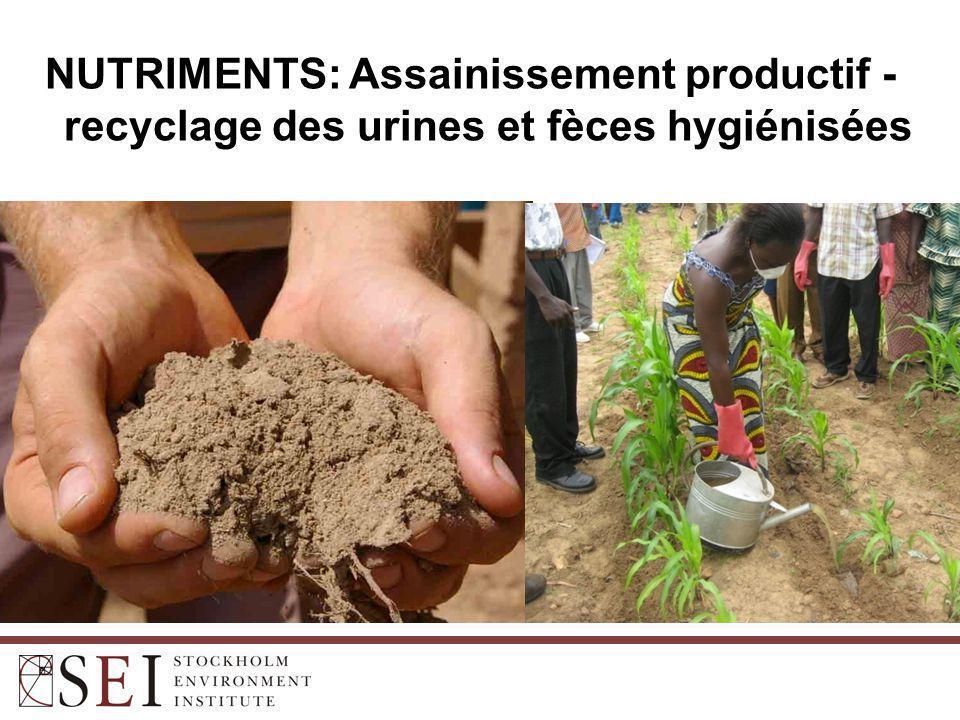 UAM: Urines hygiénisées (deux apports de 0,5 litres/poquet) = ~60 kg N/ha