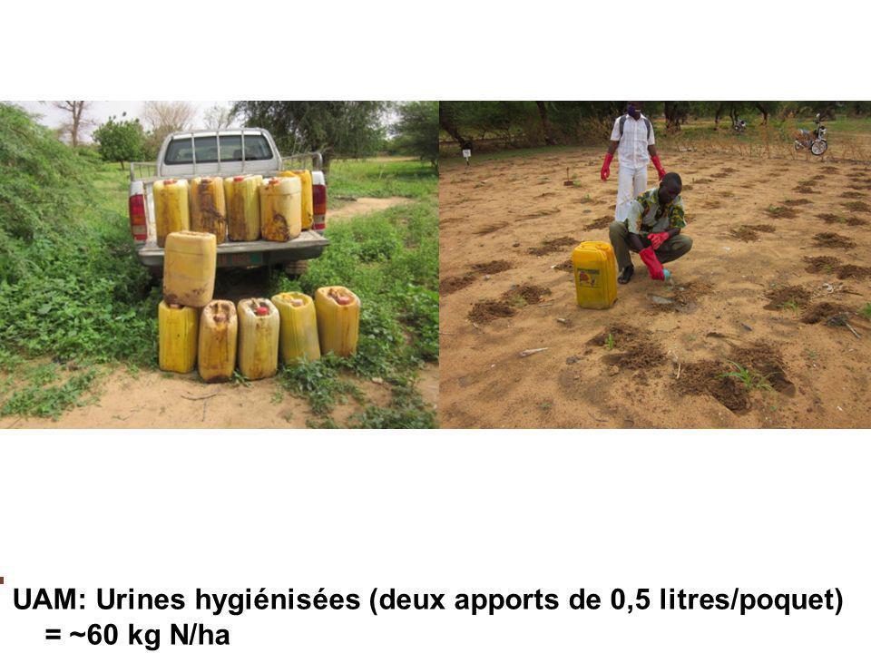 Combler les pôches de sécheresse EAU: Captage d'eau de pluie/irrigation supplémentaire