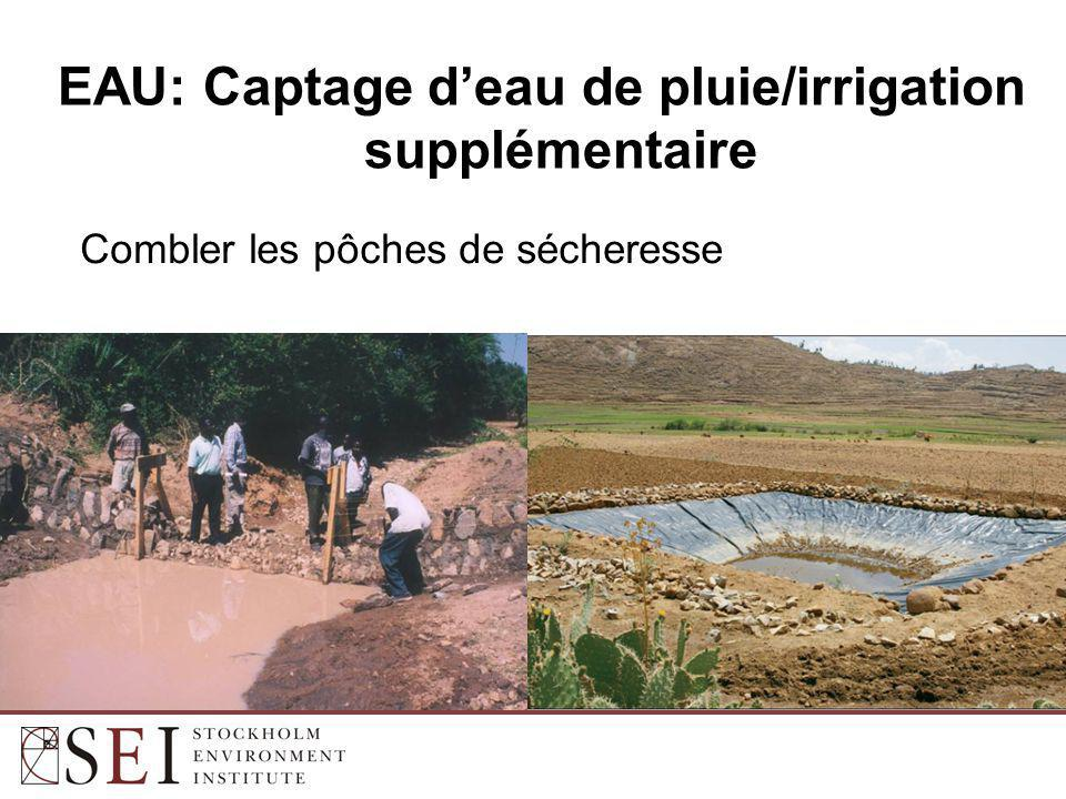 UAM: Irrigation supplémentaire (10 mm/irrigation)