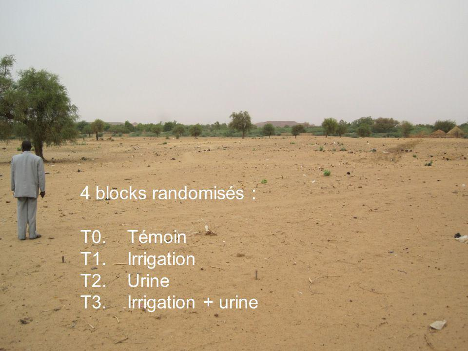 4 blocks randomisés : T0.Témoin T1. Irrigation T2.Urine T3.Irrigation + urine