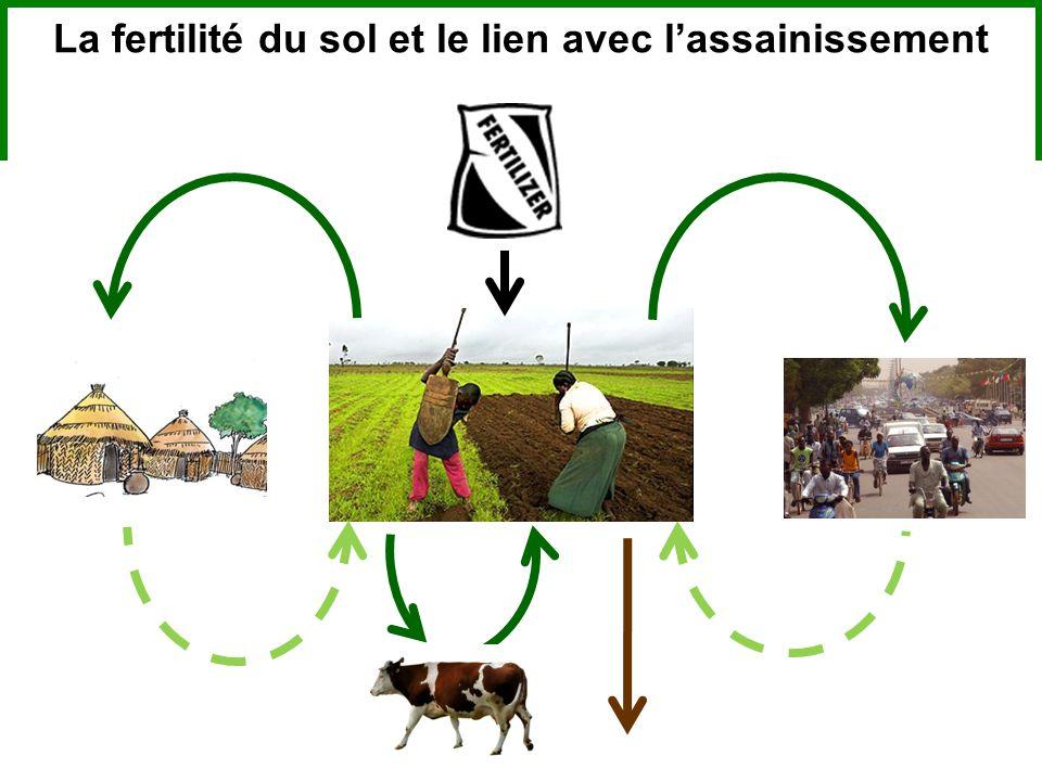 La fertilité du sol et le lien avec l'assainissement