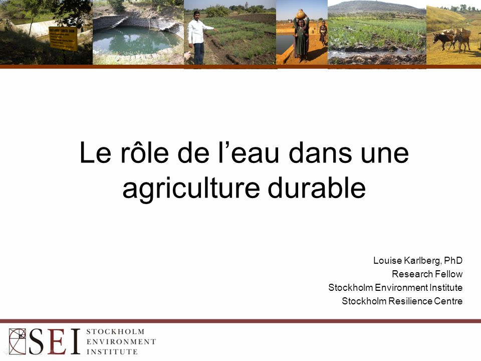 Le rôle de l'eau dans une agriculture durable Louise Karlberg, PhD Research Fellow Stockholm Environment Institute Stockholm Resilience Centre