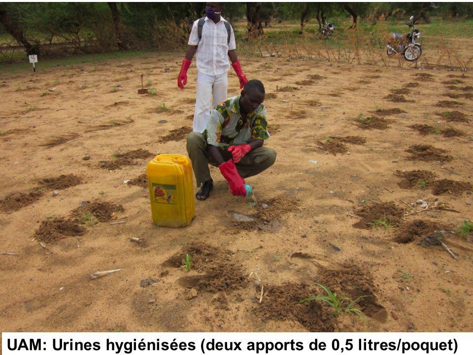 UAM: Urines hygiénisées (deux apports de 0,5 litres/poquet)
