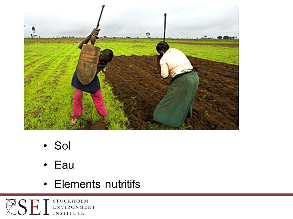 Sol Eau Elements nutritifs