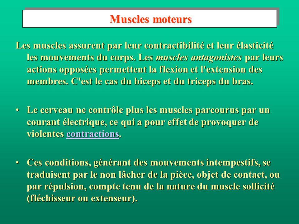 Effets sur les muscles Effets sur les muscles L intensité est déterminée par la valeur de la tension de contact et l impédance du corps humain.