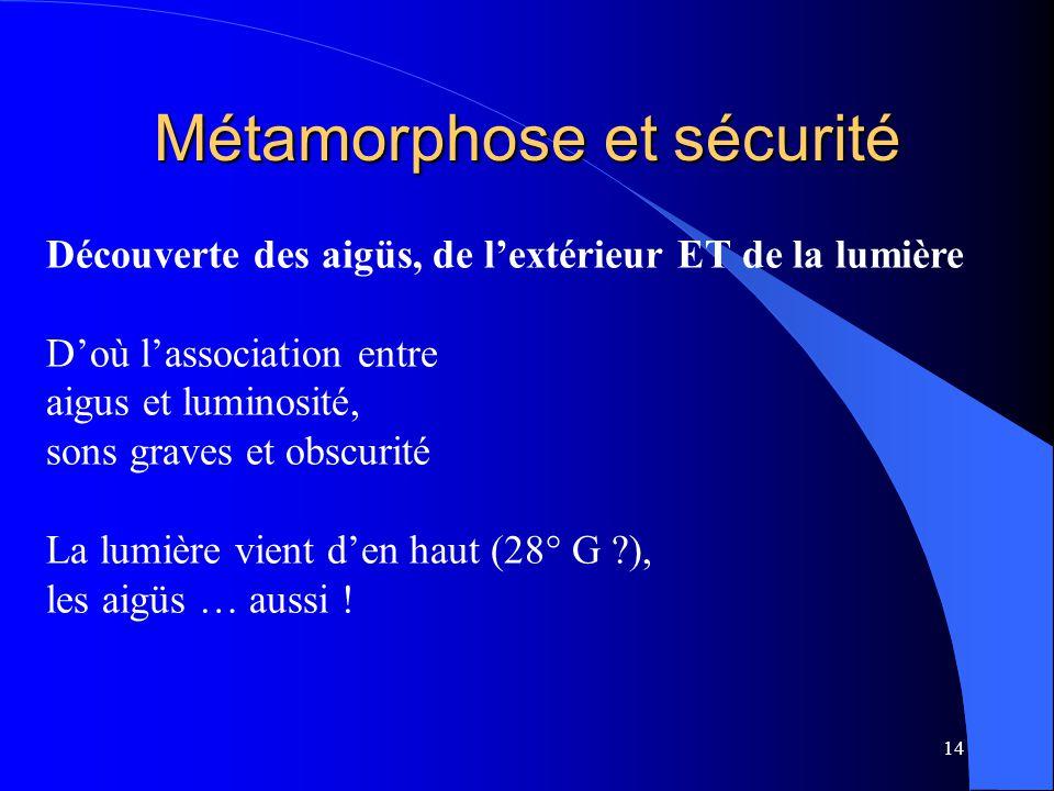 14 Métamorphose et sécurité Découverte des aigüs, de l'extérieur ET de la lumière D'où l'association entre aigus et luminosité, sons graves et obscuri