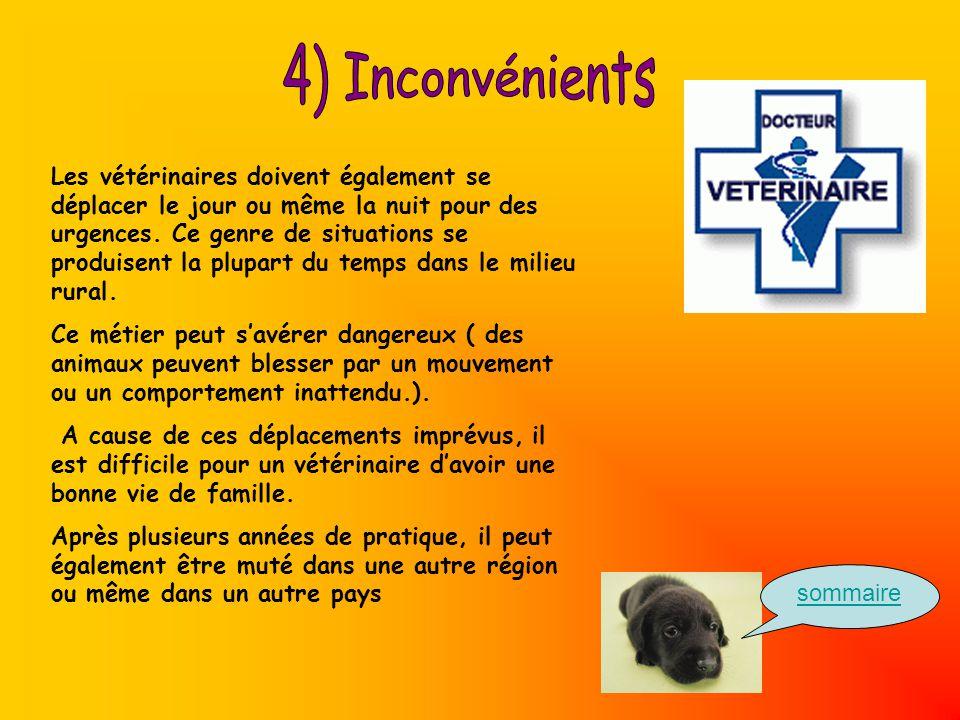 Les vétérinaires doivent également se déplacer le jour ou même la nuit pour des urgences.