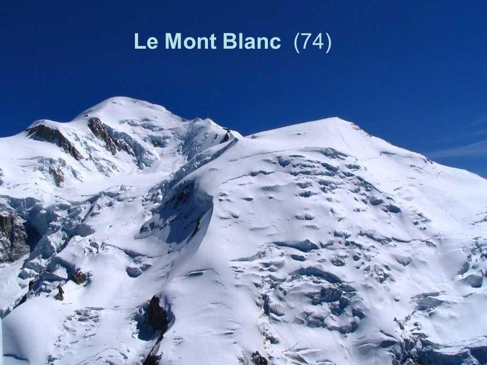 Le Mont Blanc (74)