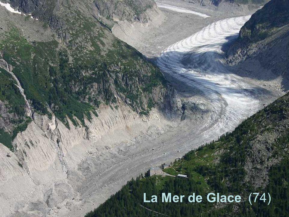 La Mer de Glace (74)