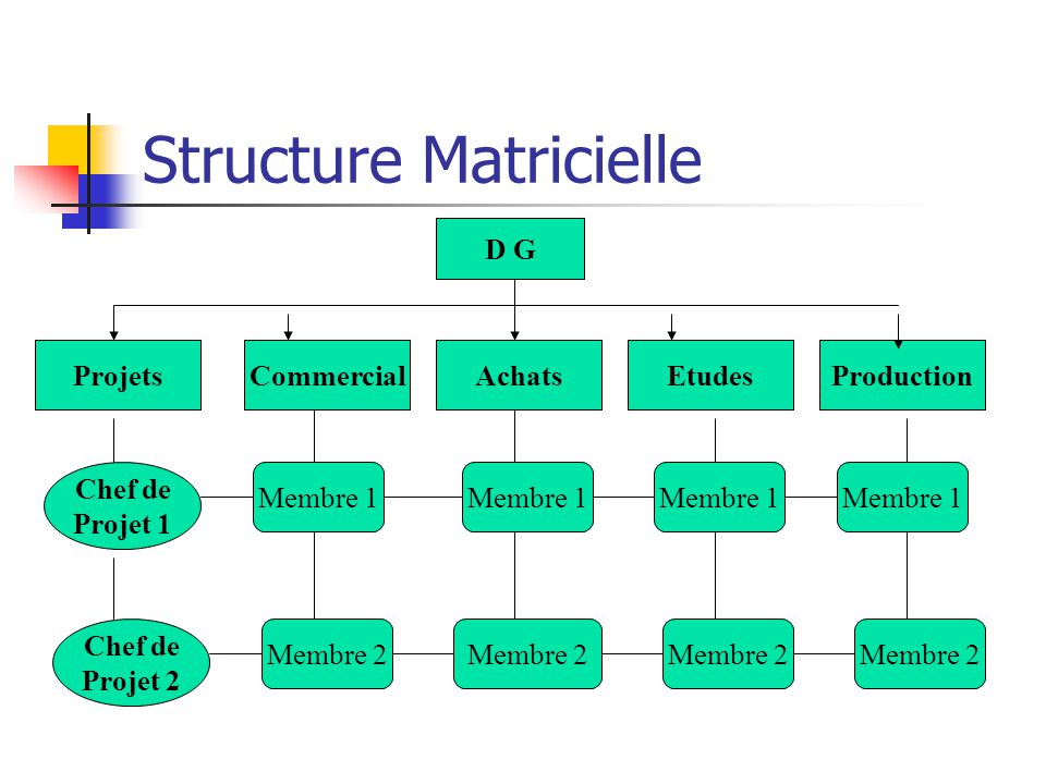 Structure Equipe Autonome AchatsEtudesProduction Chef de Projet Membre X Commercial Membre X D G